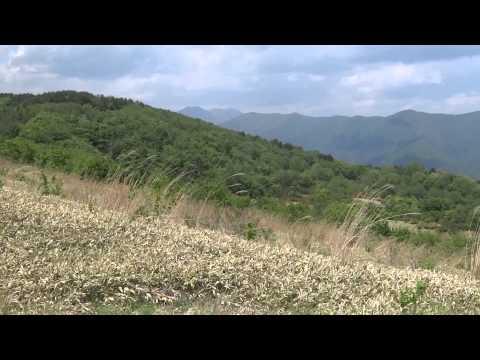 北上高地 五葉山中腹 楢ノ木平から360度の眺め