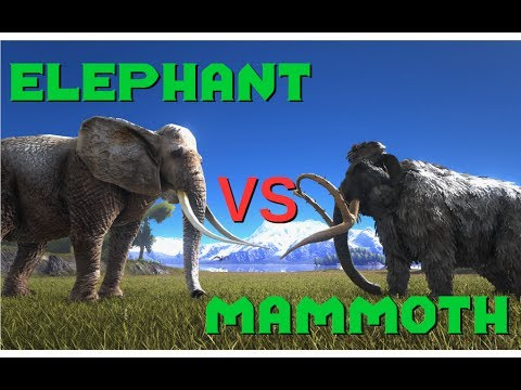 Elephant vs Mammoth, Tiger vs Thylacoleo - ARK Additional Creatures Mod || ARK: Survival Evolved