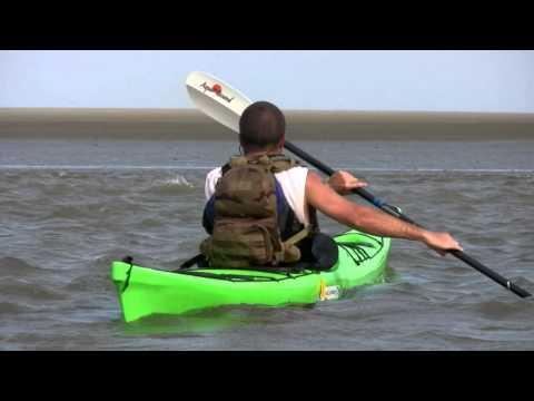 Coastal Kayaking in Charleston Harbor, Folly Beach, Intercoastal Waterway -- College of Charleston