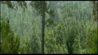 Parranda Chasnera - El Paisaje de mi tierra