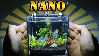 Magia NANO AKWARIUM💦 jakie ryby? jakie rośliny?