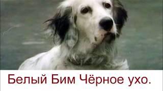 Русский язык - отрывок из книги - быстрое чтение