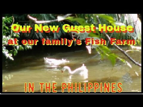 Our New Guest House At Our Family's Fish Pond In The Philippines! Fish Farm, Fish Hatchery