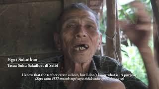 Orang Mentawai Menolak Izin Hutan Tanaman Industri