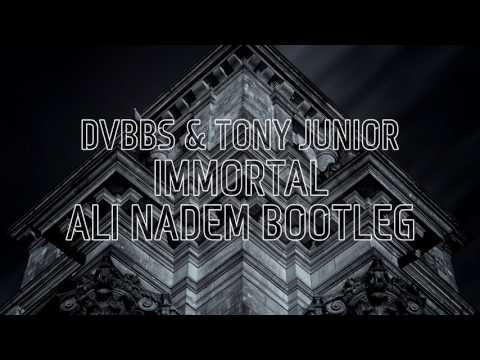DVBBS & Tony Junior - Immortal (Ali Nadem Bootleg) [FREE DOWNLOAD]
