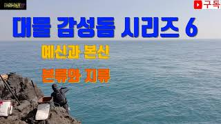 대물 감성돔 시리즈 6 (본류와 지류)(갯바위 낚시의 …