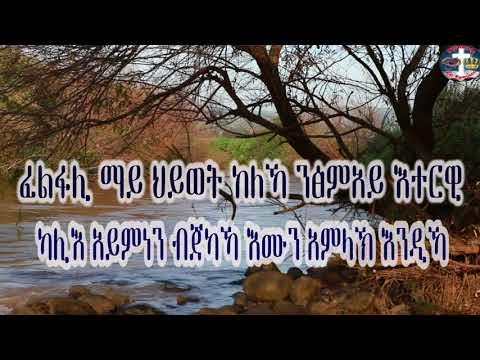 tigrigna mezmur zemarit trhas gher ትግርኛ መዝሙር በ ዘማሪት ትርሐስ ገእግዚአብሄር ፈልፋሊ ማይ ህይወት