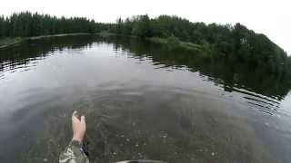 Щука на поппер (видео-отчет) рыбалка июль 2015 Ловля щуки на поппер летом Ленинградская область