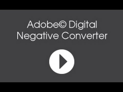 Adobe Digital Negative Converter Software