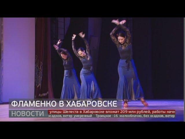 Фламенко в Хабаровске. Новости. 14/01/2020. GuberniaTV