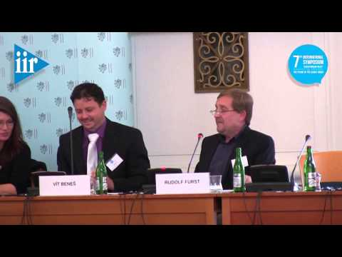 """7th International Symposium """"Czech Foreign Policy"""": Thursday, Panel II"""