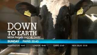 DOWN TO EARTH / MEGA FARMS: DIGITAL DAIRY
