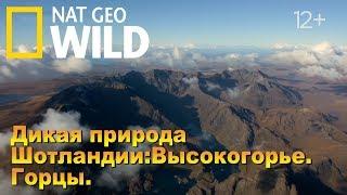 Nat Geo Wild: Дикая природа Шотландии: Высокогорье. Горцы / Wild Scotland. Highlands