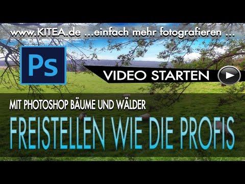 📷 Bäume Und Wälder Freistellen Wie Die Profis - Jürgen Schütz Photography - #KITEA