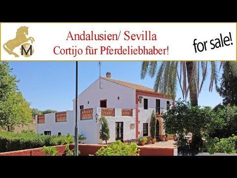 Cortijo, Finca, Gestüt in Andalusien, Sevilla zu verkaufen
