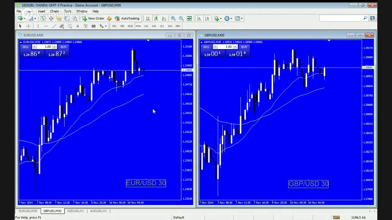 Forex tv show