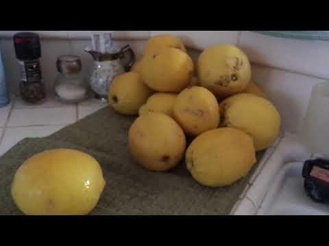 How to Juice Lemons