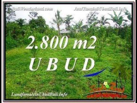 Affordable UBUD BALI LAND FOR SALE TJUB592