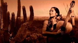 Watch Lila Downs I Would Never video