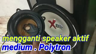 Video Cara mengganti speaker pada salon aktif Polytron download MP3, 3GP, MP4, WEBM, AVI, FLV April 2018