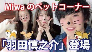 COLORFUL ch. #17 Miwaの「ペットコーナー」に メンズモデルの「羽田慎...