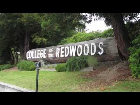 College of the Redwoods - 5 Things To Look For On Campus Tour