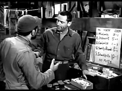 Stalag 17 1953, horse races