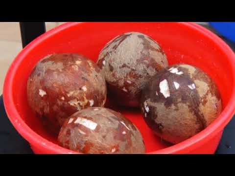 ICAR-CPCRI Technologies on Production and Processing of Coconut