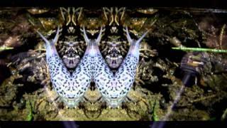 Girls On Medication (ReidyMix2) - Caged Animals