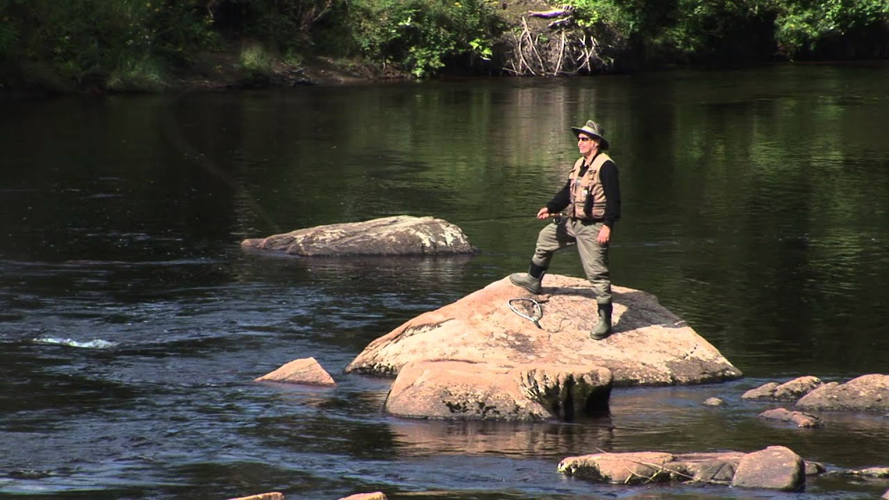 Adirondack coast the west branch of the ausable river for York river fishing report