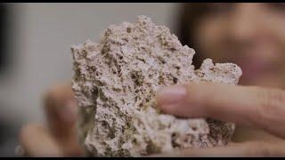 CENPES   Camila dos Anjos e suas pesquisas sobre rochas