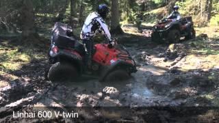Terralander 800 & Linhai 600 Stuck in mud!