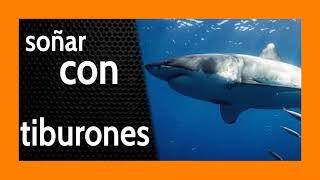 Soñar con Tiburones 🦈 Dando Luz a tus Sombras 💡