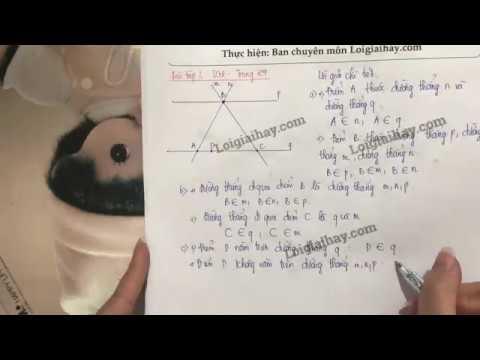 Giải bài 3 trang 104 SGK toán 6 tập 1
