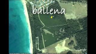 Los lugares mas extraños en Google Earth Free HD Video