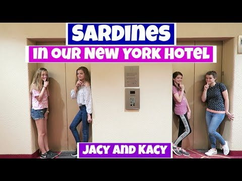SARDINES IN OUR NEW YORK HOTEL  ~ Jacy and Kacy