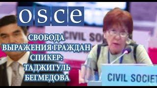 Выступление Таджигуль Бегмедовой на Заседание ОБСЕ: Туркменистан и Свобода Выражения Граждан