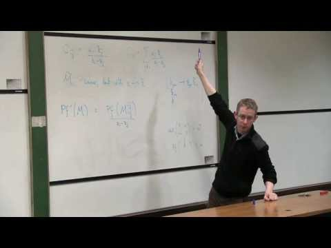 David Skinner: Ambitwistor Strings and the Scattering Equations