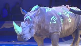 В Цирке на Фонтанке прошла генеральная репетиция шоу братьев Запашных ЦиркUS 2.0.
