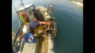 uk commercial fishing small boat potting