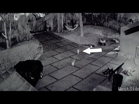 Logan Paul Reveals Kong Incident *Security Footage* & More (EMOTIONAL)!