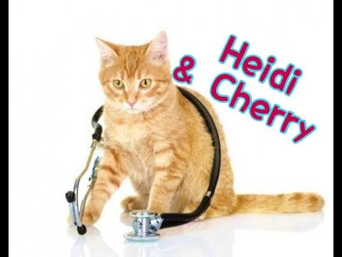 Heidi & Cherry Visit The Vets - Children's Bedtime Story/Med