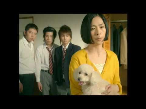 西田尚美 ファブリーズ CM スチル画像。CM動画を再生できます。