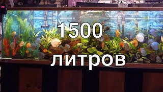 Дискусятник на 1500 литров