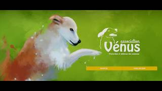 les animaux de l'association vénus (33)