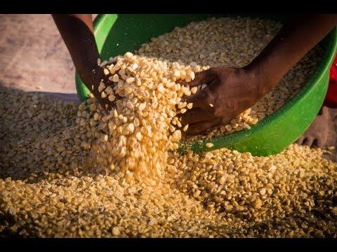Zambian Village Life
