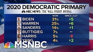 NBCWSJ Poll Joe Biden Warren Rising Harris Plummets  MTP Daily  MSNBC