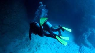 marine club nagi a行程 沖繩青之洞窟體驗潛水 與熱帶魚玩耍及餵食的體驗潛水