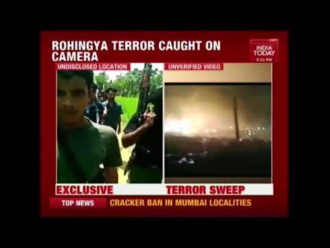 Rohingya Terror Caught On Camera, Terrorists Wave Assault Rifles