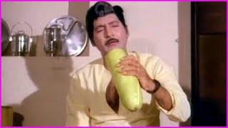 Sobhan Babu And Suhasini Funny Scenes - Punya Dampatulu Telugu Movie